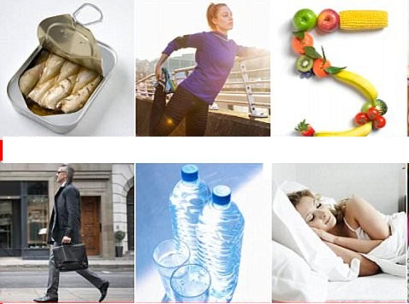 принципы здорового образа жизни проект
