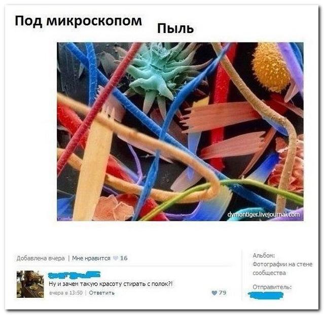 Я хочу, чтобы Вы улыбнулись. - Страница 2 Setey-socialnyh-kommentarii-citaty-vkontakte-vkontakte-smeshnye-statusy_181424166