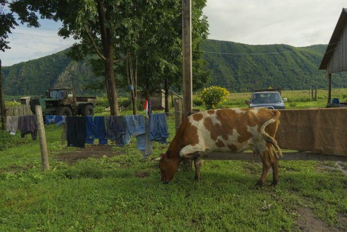 Атмосферные фотографии деревни, где живут староверы