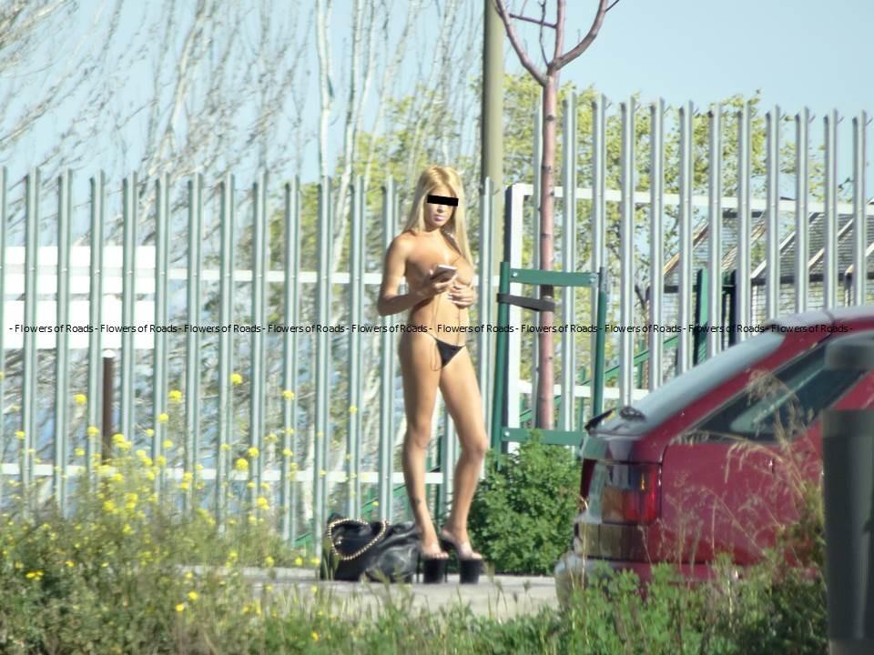 проститутки на дорогах области