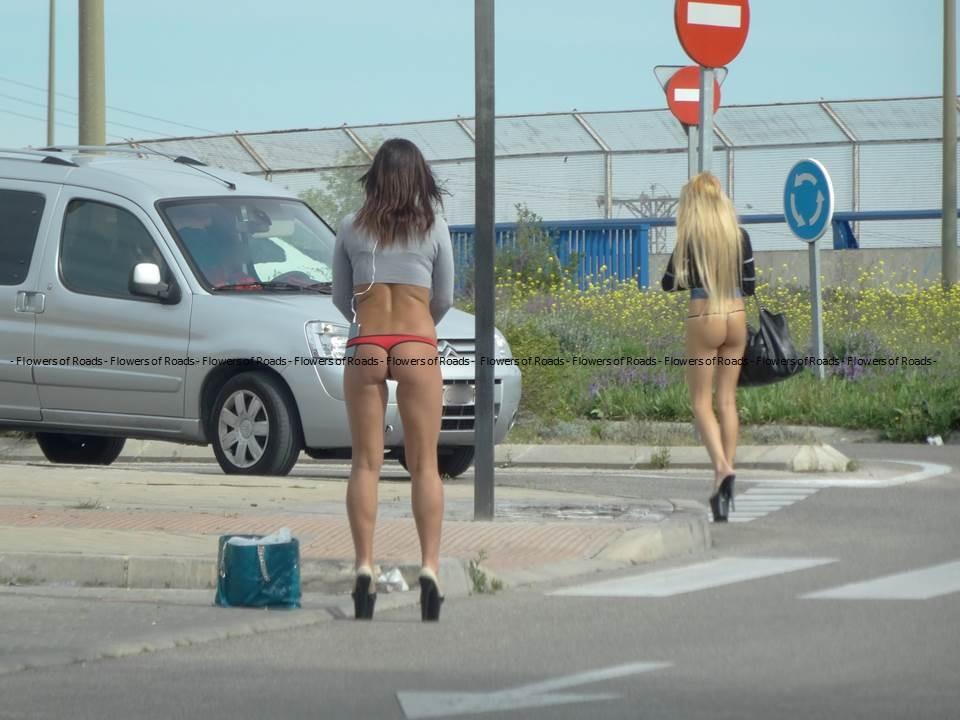 Проститутки Киевской Трассы