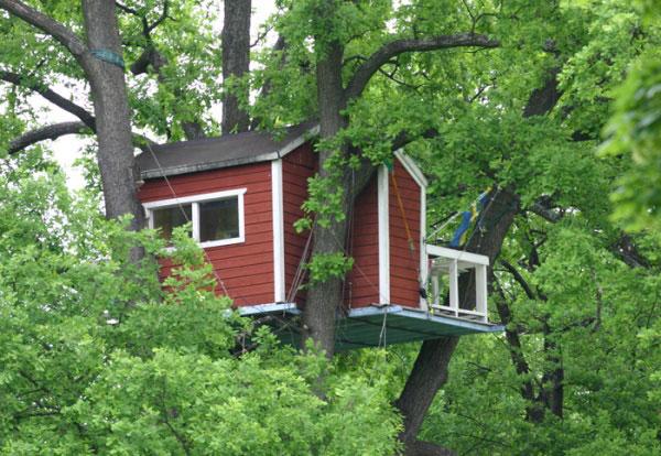 Домики на деревьях видео