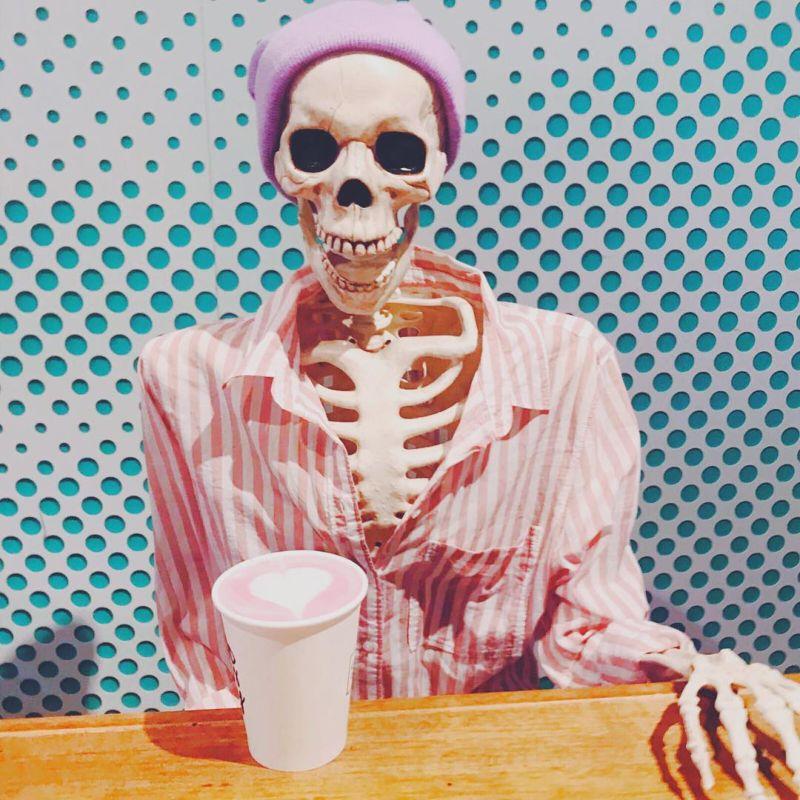 Скелет человека картинки веселые отличие