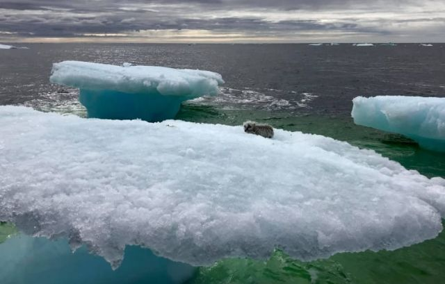 Encuentra en el hielo en mar abierto sorprendidos pescadores