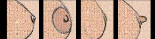 chuvstvitelnost-zhenskih-soskov