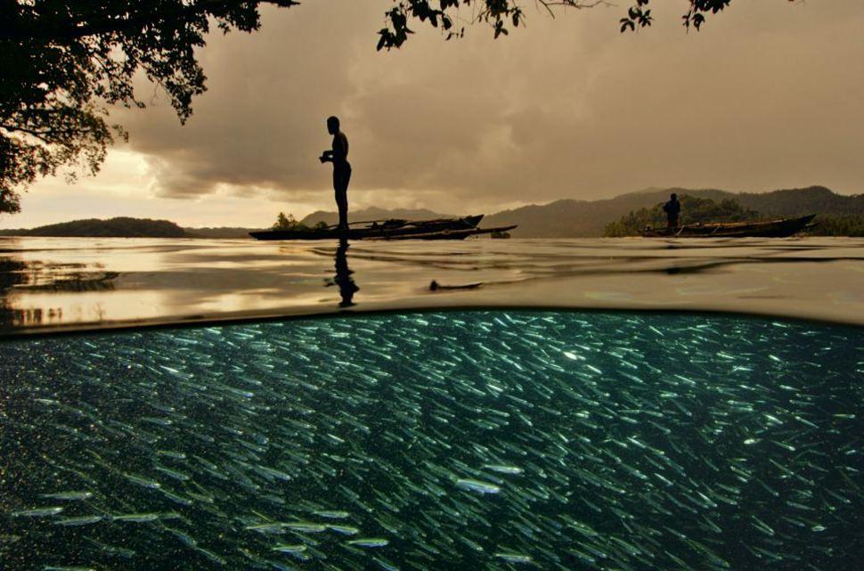 Над водой картинки